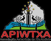 apiwtxa.org.br